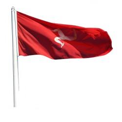 Isle of Man Flag 5x3ft
